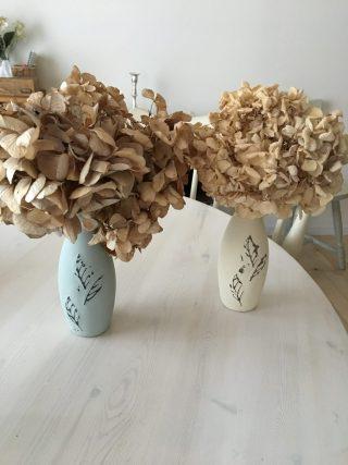 紫陽花のドライフラワー作り。ドライフラワーにする紫陽花は、いつ頃がおすすめ?